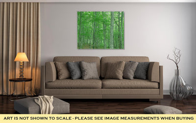 Gallery Wrapped Canvas, Green Forest Nature Landscape - fashionbests