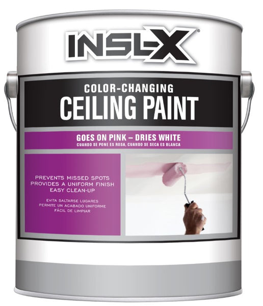 Insl-X Ceiling Paint - White