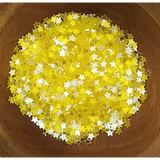 3mm Transparent Neon Yellow Solid Star Confetti - Sequins - Kat Scrappiness