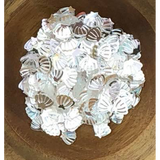 Mini Clear Seashell Sequins by Kat Scrappiness