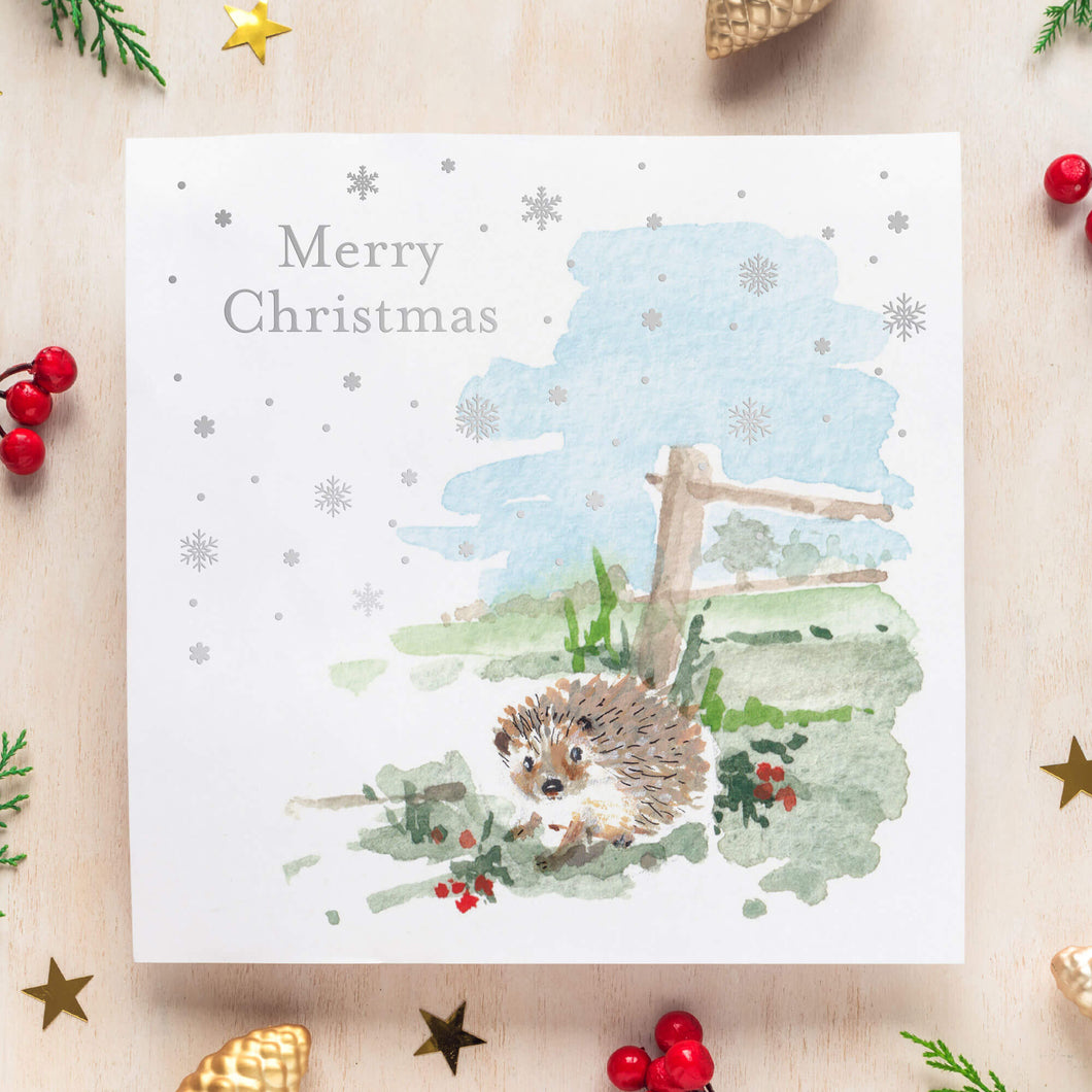 'First Snow of Winter' Christmas Cards