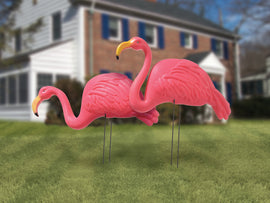 Rental Plastic Flamingo, each