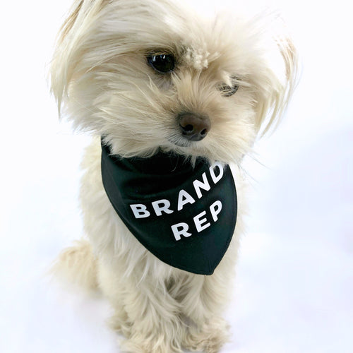 """Brand Rep"" Black Dog Bandana - Dog Influencers"