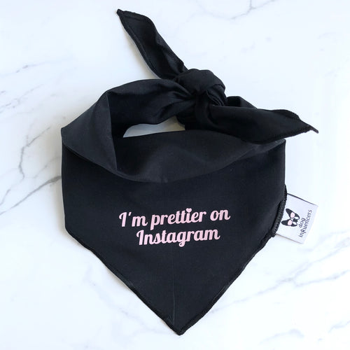 """I'm prettier on Instagram"" Black Dog Bandana - Dog Influencers"