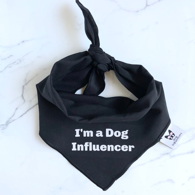 Dog Influencers Fan Bundle: Black T-Shirt + Bandana + Cap + Dog Instacards - Dog Influencers