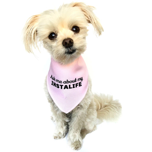 """Ask me about my Instalife"" Pink Dog Bandana - Dog Influencers"