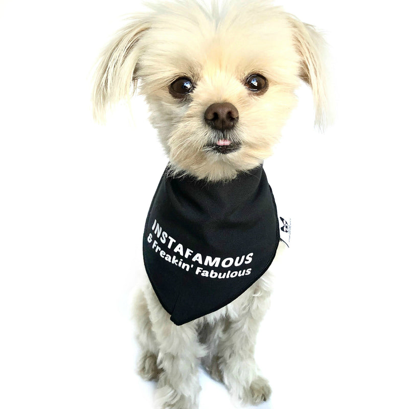 """Instafamous & Freakin Fabulous"" Black Dog Bandana - Dog Influencers"