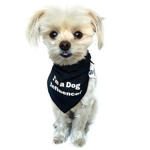 """I'm a Dog Influencer"" Black Dog Bandana - Dog Influencers"