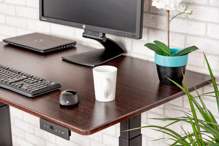"LUXOR 48"" 3-STAGE DUAL MOTOR ELECTRIC STAND UP DESK  (BLACK FRAME/Dark Walnut TOP)"
