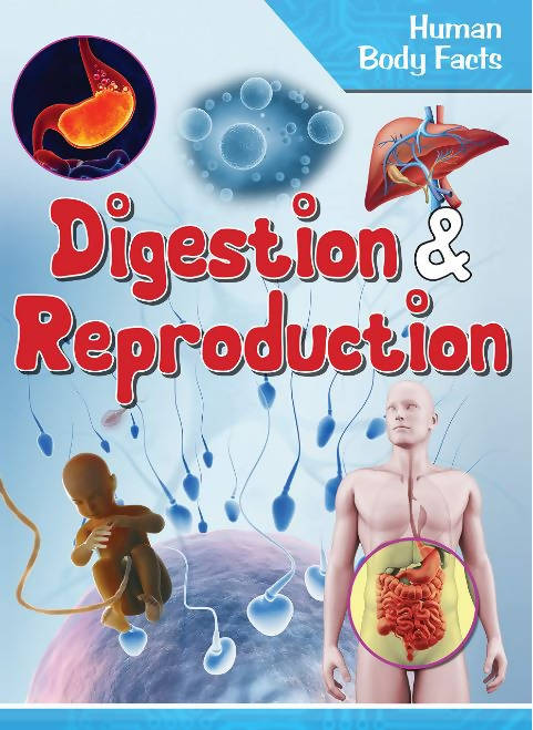 DIGESTION & REPRODUCTION : HUMAN BODY FACTS