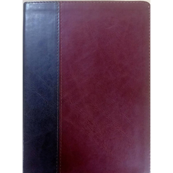 NLT Life Application Study Bible Brown/Tan