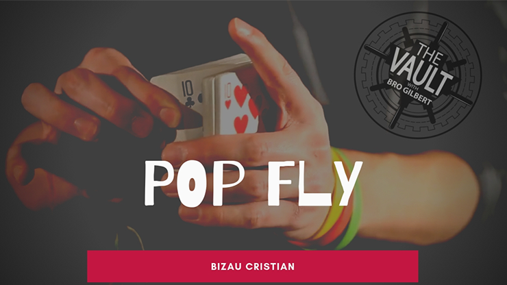 The Vault - Pop Fly By Bizau Cristian Video Download