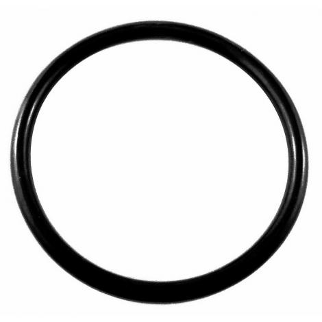 Lid O-Ring for Keg - 4 in