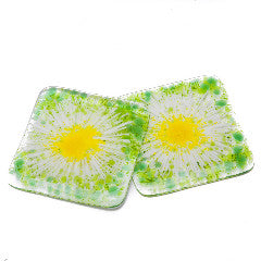 Set of Two Daisy Chain Fused Glass Coasters