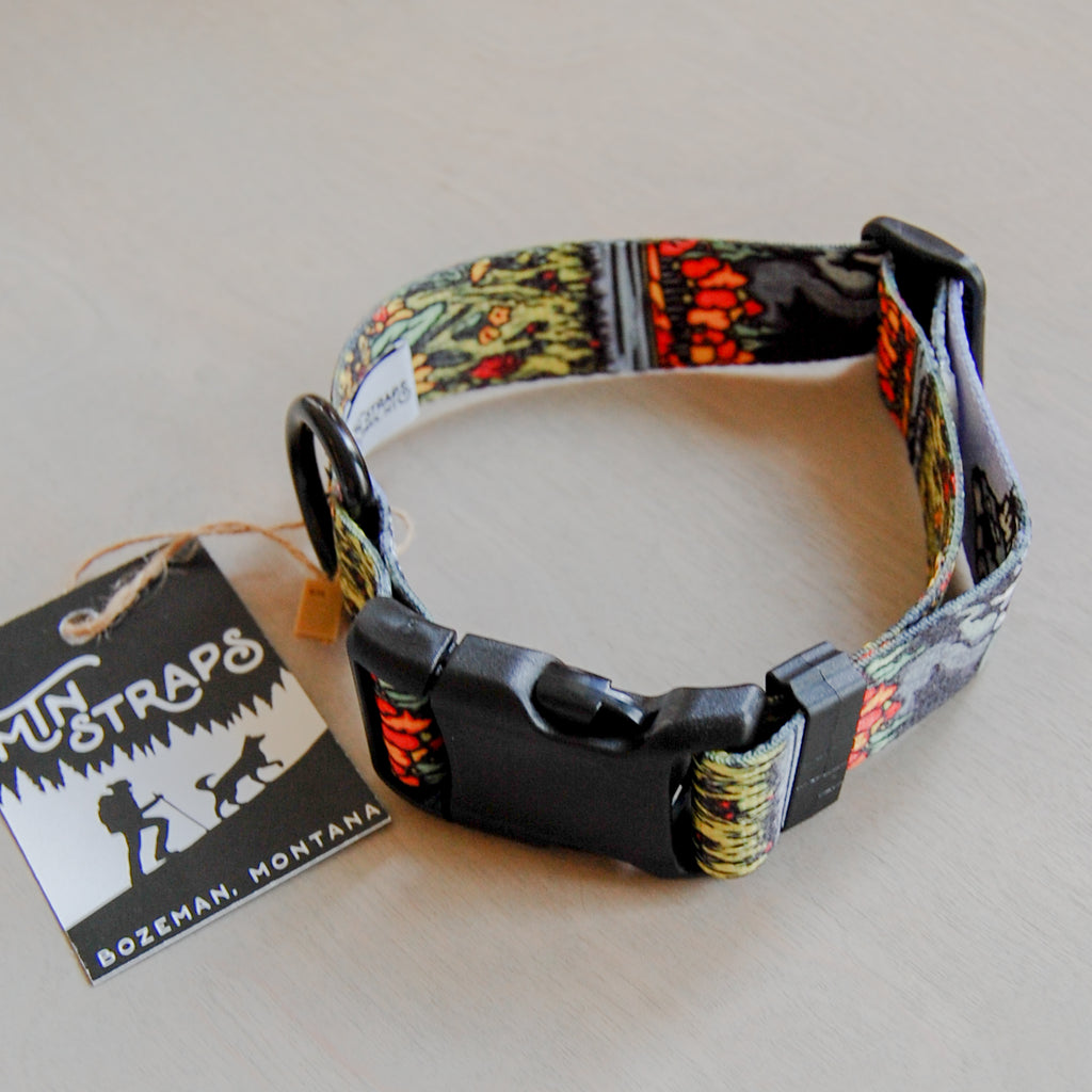 Tetons Dog Collar