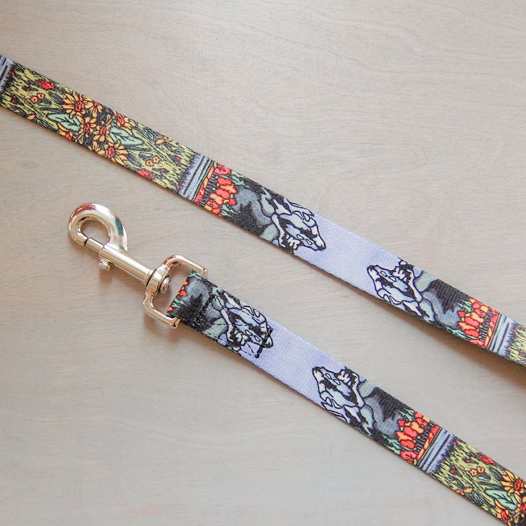 Tetons Dog Leash
