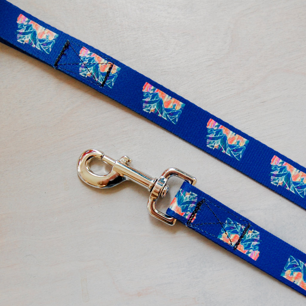 Mtn Blues Dog Leash