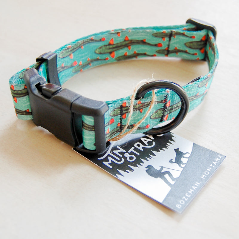 The Flow Dog Collar