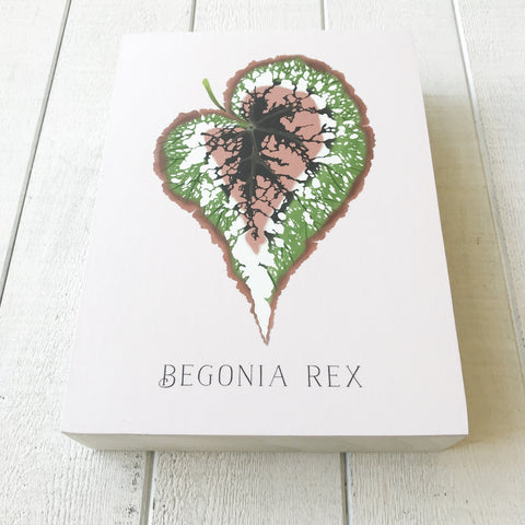 Begonia Rex Wooden Art Block