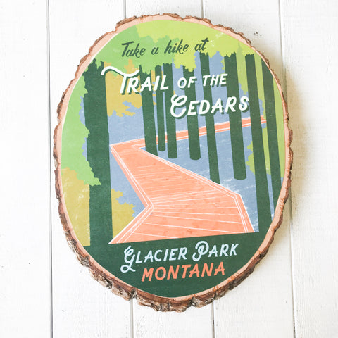 Trail of the Cedars - Bark Wood Art