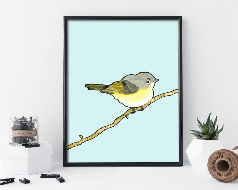 Birds of North America Wall Art