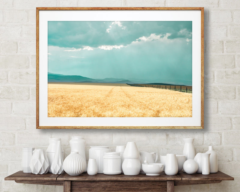 Wheat Field Landscape Photography