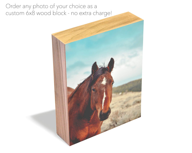 Horse Wood Photo Block