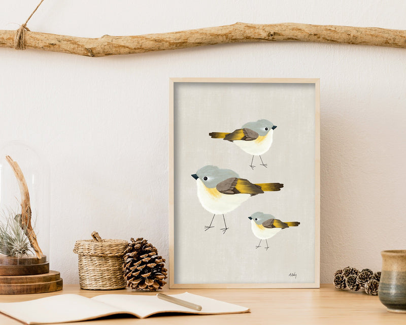 American Redstart Bird Art Print