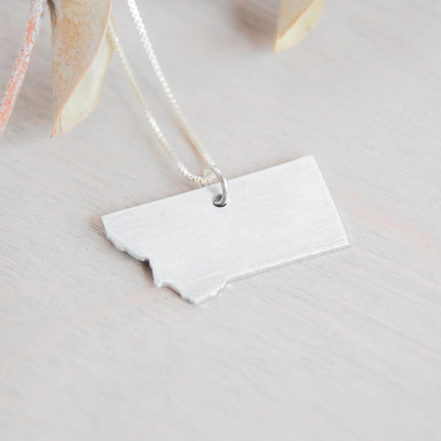 Flying Class Surgical Steel Pendant