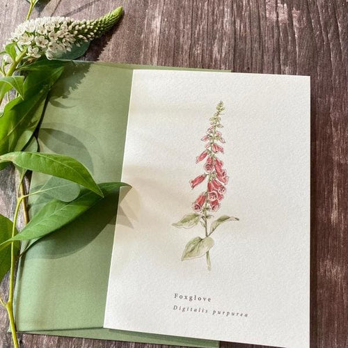 Beautifully hand Illustrated Blank Card