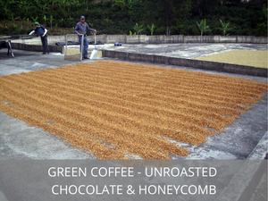 Costa Rica Finca Gamboa </br>Green Coffee Beans
