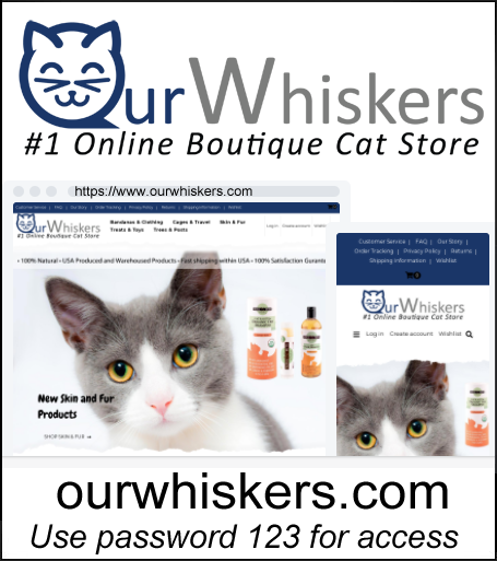 Purchase Premium Cat & Kitten Supply Store - USA Suppliers