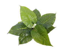 Load image into Gallery viewer, FLF Artificial Potted Taro Plant / Elephant Ear 55cm