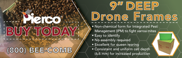 Drone Frames - Varroa Pest Management