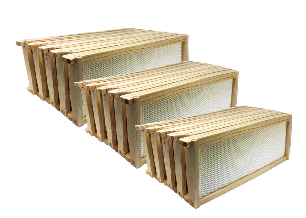 "6"" Medium Wood Frame, White Foundation - 60 Pack ($2.75 ea.)"