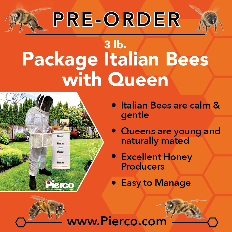 3 lb. Package Bees With Queen - Pickup Only @ Riverside, CA