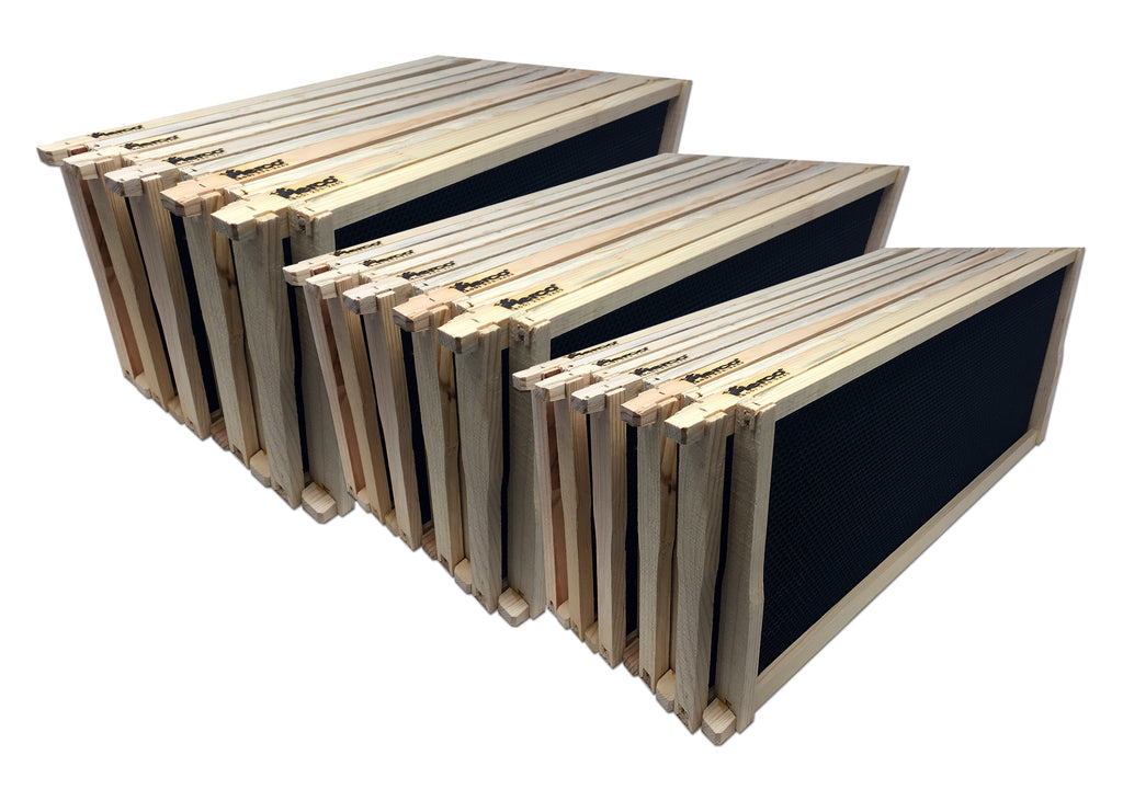 "9"" Deep Wood Frame, Black Foundation - 38 pack ($3.55 ea.) - DOUBLE WAX"
