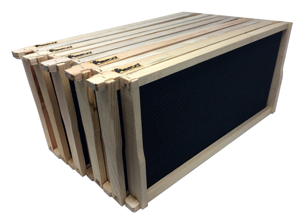 "9"" Deep Wood Frame Black Foundation - 10 pack ($3.35 ea.) - DOUBLE WAX"