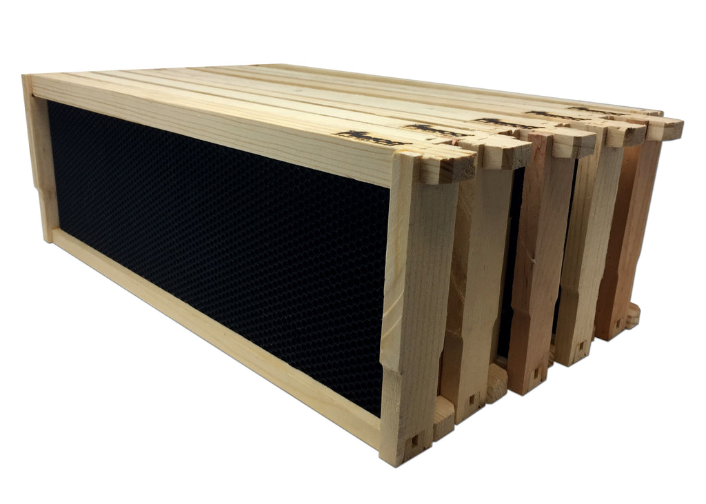 "6"" Medium Wood Frame, Black Foundation - 10 Pack ($2.80 ea.)"