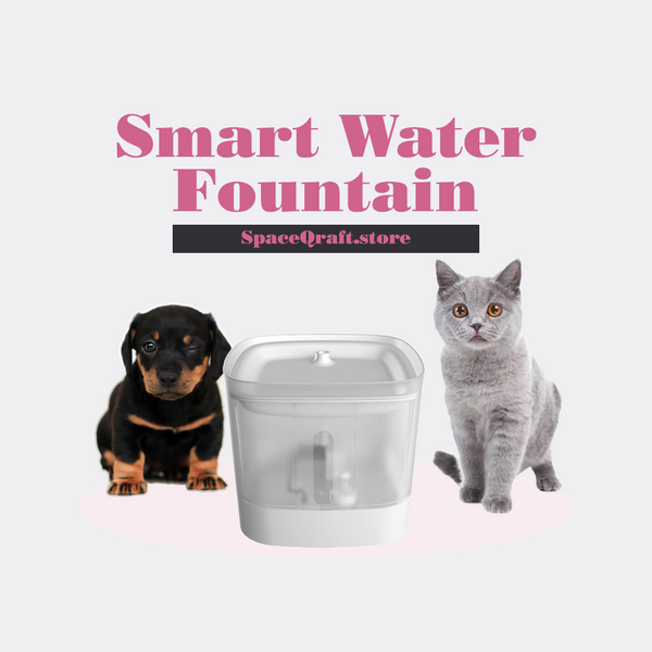 Smart Water Fountain