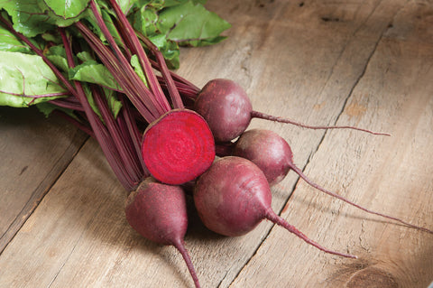 Red Ace (F1) Beet Seed - 20 seeds