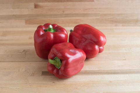 X3R Red Knight (F1) Bell Pepper Seed - 10 seeds