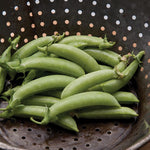 Sugar Snap Pea Seed - 20 seeds