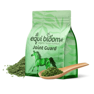 Equi Bloom Nutrition - Joint Guard