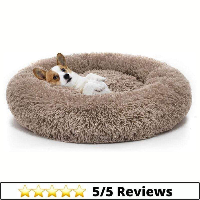 Make-trends.com Small / Taupe Calming Donut Dog Bed in Shag Fur, Self-Warming Machine Washable Pet Bed in Multiple Sizes