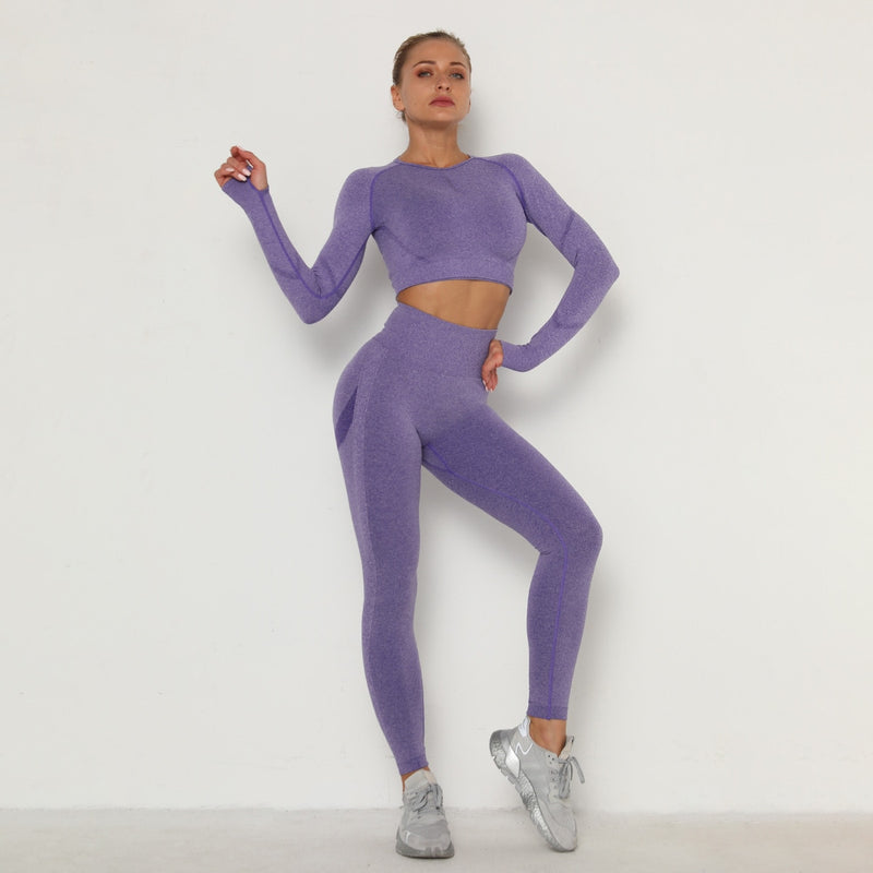Seamless Women Gym Set Long Sleeve Top High Waist Belly Control Sport Leggings Gym Clothes Seamless Sport Suit Sexy Booty Girls
