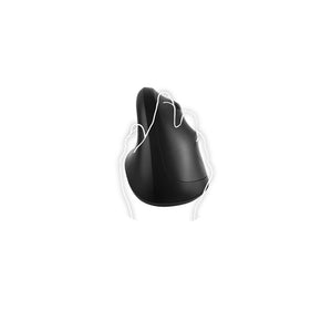 Oxford wireless Ergo mouse - zwart