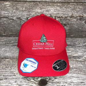 Cedar Hill Christmas Tree Farm solid back ball cap
