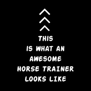 An Awesome Horse Trainer shirt - HorseObox