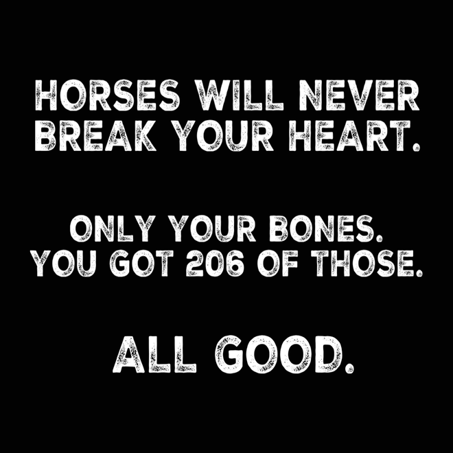 Horses never break your Heart